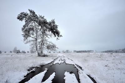 Sneeuw_19705c_JD_KWA0115WI