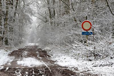 Sneeuw_met_kleurelement_19806b_JD_KWA0115WI