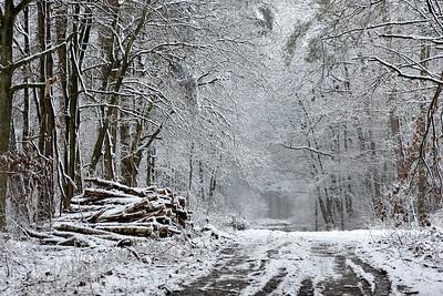 Sneeuw_19810b_JD_KWA0115WI