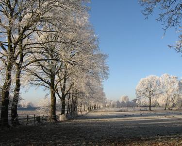 Winter_2007_3282_JD