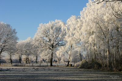 winter_2007_3232b_JD_HEP1207WI