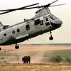 "Exercise ""Co-operative Partner 2000"" in Odessa (Ukraine), June 2000.<br /> - Evacuation of the wounded by air with US Marines Boeing Vertol CH 46 Sea Knight."