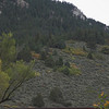 Love the colors in the hillside.  Dusty greens and bright yellows and chartreuse of fall.