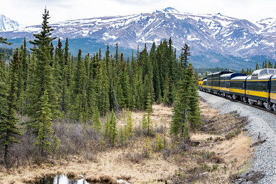 Wilderness Express leaving Denali station.  Alaska Railroad, Alaska