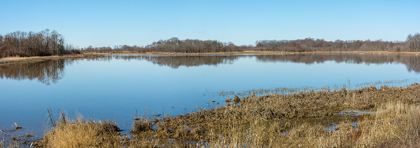 Panorama of Shearness Pool  Bombay Hook National Wildlife Refuge  Smyrna, Delaware