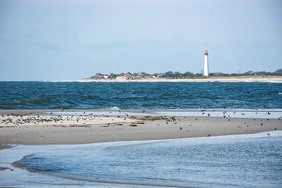 Beautiful Cape May