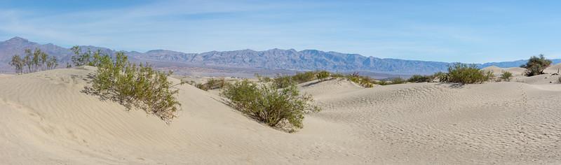 Mesquite Flat Sand Dunes  Death Valley National Park California