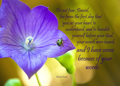 No matter how small you feel - He hears your words, and He will come because of them.