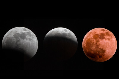 Super Blood Wolf Moon  Lancaster, PA
