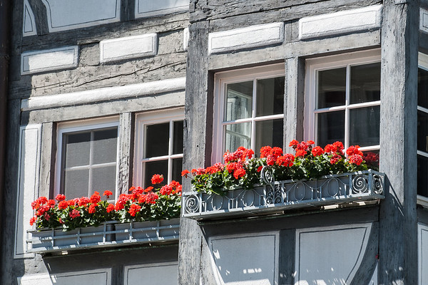 Lindau Window Box  Lindau, Germany