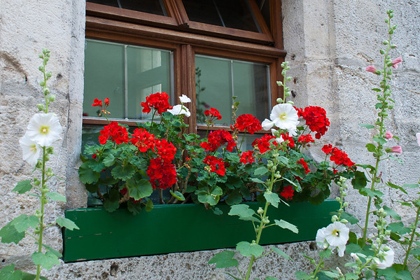 Rothenburg Windowbox  Rothenburg, Germany