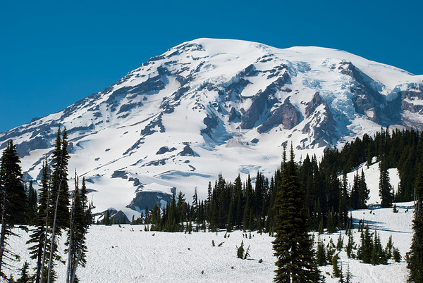 Mount Rainier  Mount Rainier National Park Washington