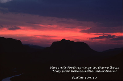 Psalm 104:10 photographed along the Texas-Mexico near Lajitias, TX