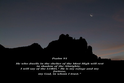 The Psalms in Nature