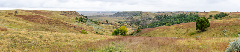 Teddy Roosevelt National Park  Medora, North Dakota