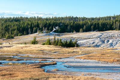 Upper Geyser Basin  Yellowstone National Park