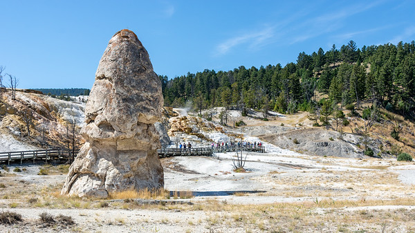 Liberty Cap  Mammoth Hot Springs Yellowstone National Park