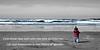 halle ocean redoc d_fs_227962