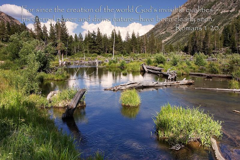 Divine Nature