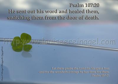 Psalm 107:20-21