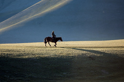Mongolia2015__P8C2439