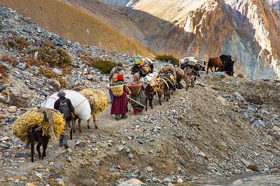 Ladakh2018_DP8C8299