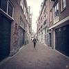 """<a href=""""https://www.instagram.com/p/BLnWwZ4gMHE/?taken-by=beabirdfoto"""">https://www.instagram.com/p/BLnWwZ4gMHE/?taken-by=beabirdfoto</a>"""