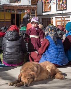 Ladakh_1000721