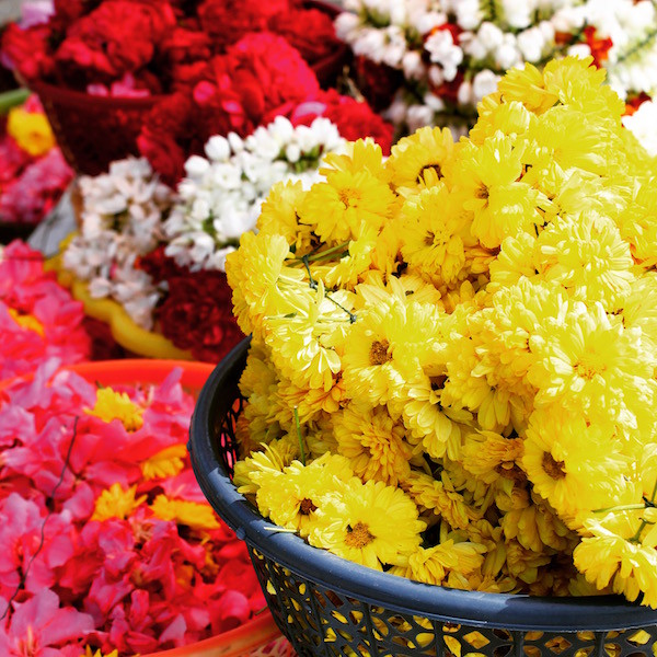 India flowers at temple