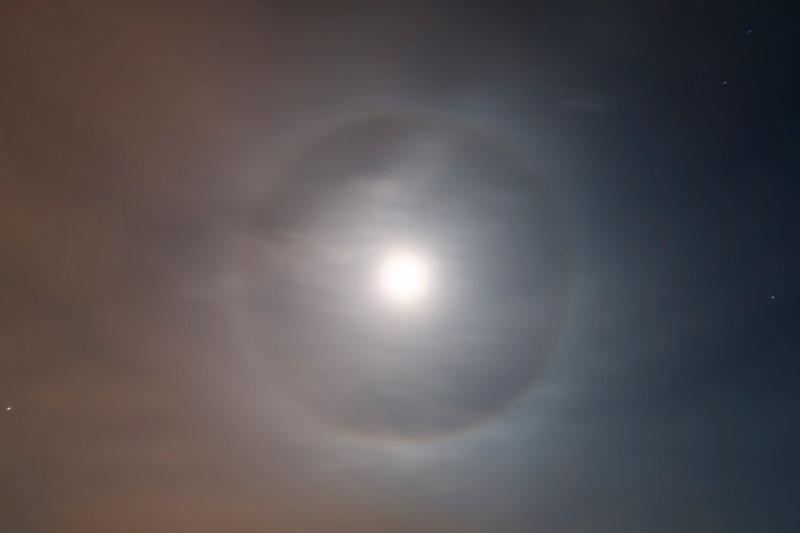 Moondog Over Oregon