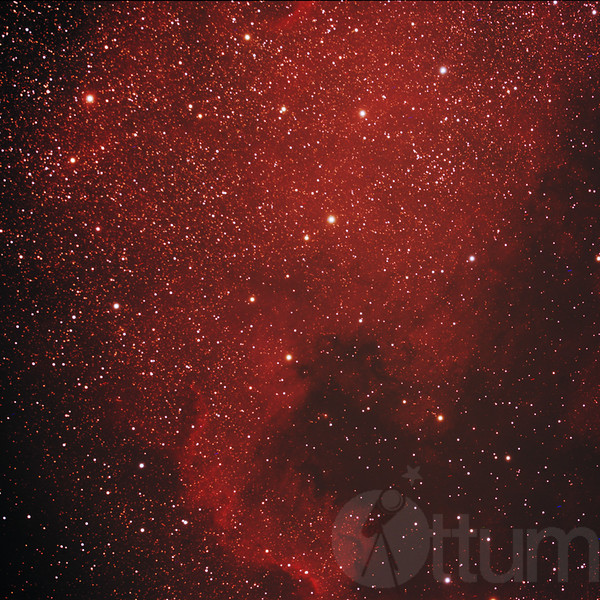 The North American Nebula