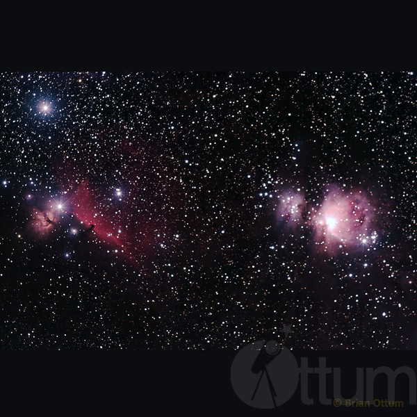 Horsehead and Orion Nebula