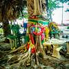 Culture and ceremonies