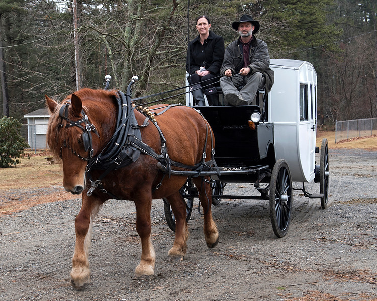 Hickory Knoll Farm has provided sleigh or carriage rides every year for Winterfest. Amy and Shawn guide Molly as they provide carriage rides for Winterfest visitors.