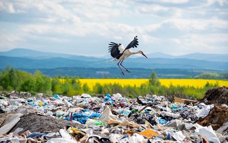Landfill in Ivano-frankivsk Oblast, Ukraine