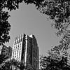 Our NYC Honeymoon.  Photo by @dmohninger #getcraftyphotographers #lx100 #lumixlounge #lumixusa #lumixcreatives #abstract #abstractart #lumixphotography #lumixstories #lumixexperience #nyc #lumixandme #lumixlife #lumixlx100 #photooftheday #instagoodmyphoto #artsyfartsy #createtoexplore #exploretocreate #flightsoffancy #ohsopretty #fineart #streetdreamsmag #streetphotography #streetsincolor #streetphotographer #streetphoto #ig_masterpiece #ig_captures #streetphoto_bw #streetphoto_color #streetphotography_bw #streetphotograph #instaarte #instaarts #instaartistic #noiretblanc #noirlovers #nero #ic_bw #bw_society #monoart #fineart #artfairnyc #minimalism #minimalismo #minimalismbd #minimalisme #minimalism_challengigers #minimalismfortheseven #minimalism42 #minimalism__ #minimalismfor9 #minimalismarchitecture #minimalismus #minimalismp #minimalismdb #minimalism_alliance #minimalisminnaturecontest #minimalismlove #minimalism_ #minimalism_lover #minimalismobsession #minimalismlovers #minimalismproject #minimalismforus #minimalisminthemorning #minimalisma #minimalism_challengigers_finalist #minimalismdesign #minimalismaddicted #minimalismstyle #minimalismonaupd #abstracters_anonymous #abstract_buff #abstractmybuilding #abstraction #abstracto #abstractarchitecture #abstracture #abstractobsession #abstractphotography #abstractrus #abstractexpressionism #abstractporn #abstracts #abstractpainting #abstractartist #abstractwednesday #abstractphoto #abstractarts #abstractors_anonymous #abstracters #abstractmyarchitecture #abstract_anonymous #abstractbuff #abstractaddict #abstracted #abstractexpressionist #abstractgram #architecture #architectureporn #architecturelovers #artofvisuals #streetmeetina #heatercentral #symmetricalmonsters #streetview #globe_travel #chasingautumn #theprettycities  #newyorkcitylife #urbanwalls  #wearethestreet
