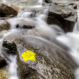 Stream Flowing over Rocks