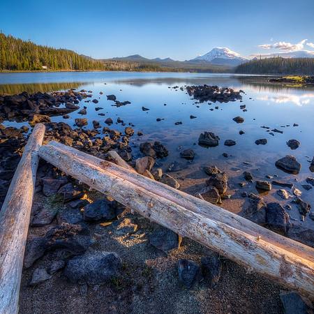Elk Lake Beach Logs