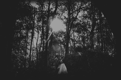 Forest wedding at Wildwood, Kangaroo Valley