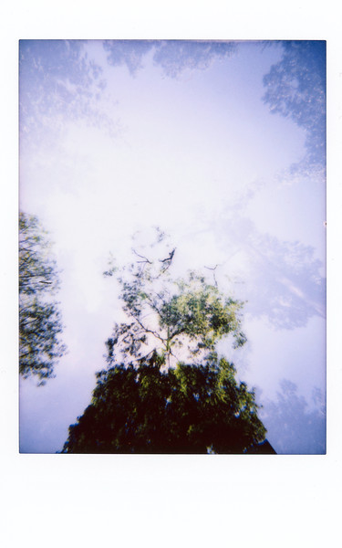 One month with the Lomo'Instant : 18 september