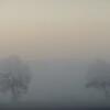 Duo dans la brume