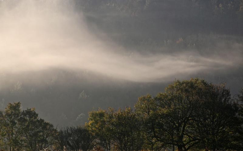 Voile de brume