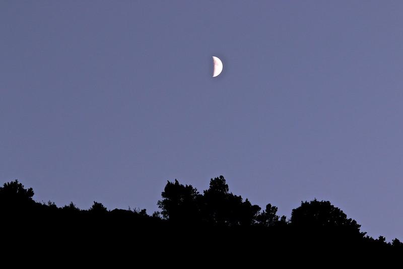 Noces nocturnes