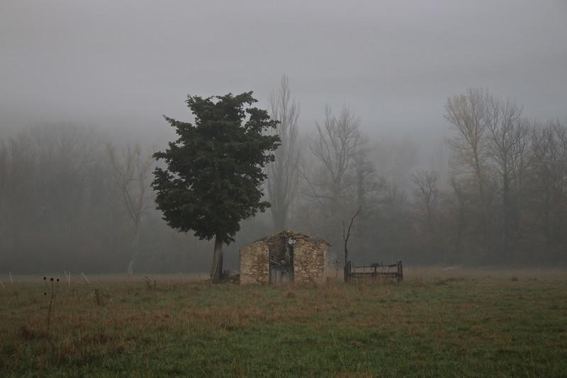 Un matin à la campagne