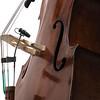 dvote™-CORE-4099-on-bass-2