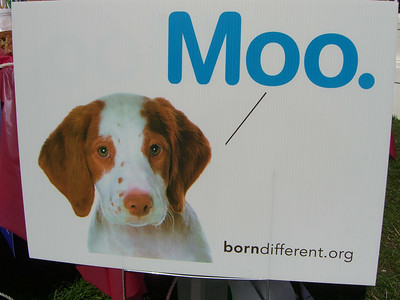 Meet Herman.  Maybe he moos instead of barks - but God still loves him and so do I. They were giving away tons of these signs.