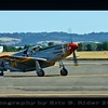 CAF North American P-51C Mustang. Tuskegee Red Tail Squadron.