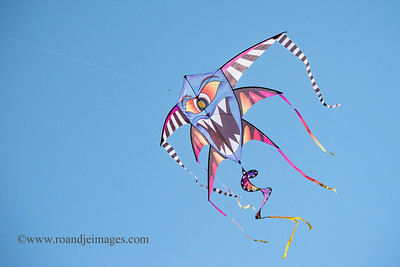 Cherry Valley Kite Fest