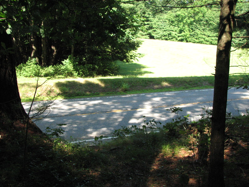 This view shows the field across the street from the cemetery. the gravestones are just behind the photographer. The faint path up the embankment is in the foreground. The woods here are about six feet above the road level.