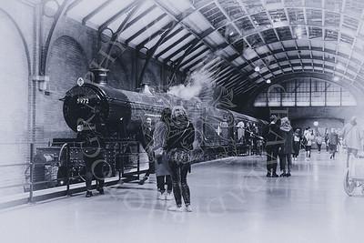 The Hogwart's Express-1
